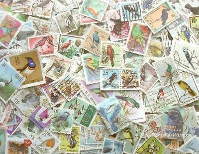 Bird  Themed Stamps Off Paper X 50  -  Good Mix   -  All Different