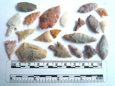 20 x Neolithic Arrowheads - Genuine Saharan Flint Artifacts - 4000BC (2903)