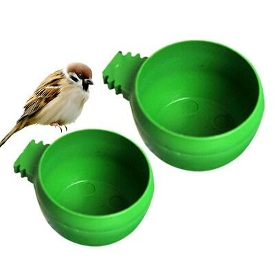 New Bird Feeding Bowl Food Water Cup Pigeons Parrot Trough Sand Cup Pet Supplies