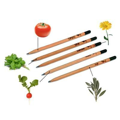 Sprouting Bud Pencil Plant-Herb Basil Tomato Green Pepper 8PCS Office Decration