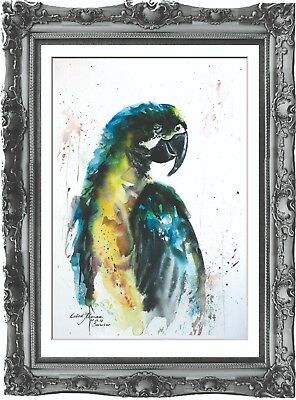 original painting art parrot bird 296LM watercolor peinture perroquet oiseau A3