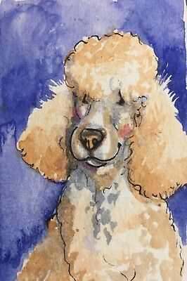 ACEO Standard Poodle Cream Colored Sweet Face.Orgl Waterclr Art By NFISH