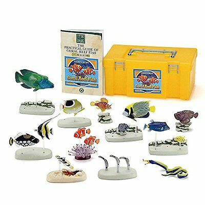 New Nature's Library Coral Reef Fish - COLORATA PVC Figure Set #972694