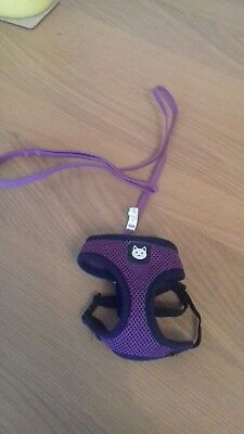 Cat harness and Lead from Pets at Home