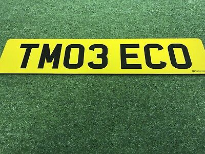 Tesla Personal number plate TM03 ECO ready to go purchased from DVLA