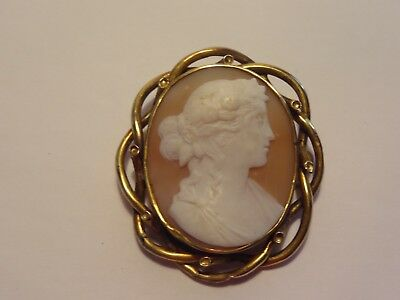 Large Antique Hand Carved Shell Cameo Pin Shiny Brass Frame -Excellent Condition