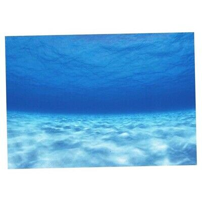 3D Aquarium Background Poster Fish Tank Underwater Landscape Decoration