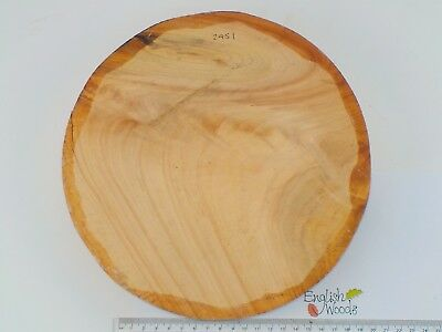 Crotch Wellingtonia wood turning or carving bowl blank.  230 x 48mm.  2451
