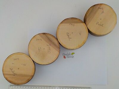 4 Silver Birch wood turning or carving bowl blanks.  115 x 50mm.  2473