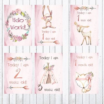 Baby Milestone Cards, 4x6 Photo Prop, Animals, Age Cards,