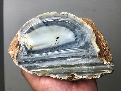 Top Quality Natural Gem Banded Agate Rough - 8.5 Lbs - From Brazil