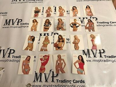 2003 Benchwarmer Cards Lot of 199 Cards