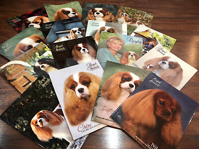 HUGE LOT of Royal Spaniels Magazines ~ Books ~ Cavalier King Charles ~ PHOTOS!