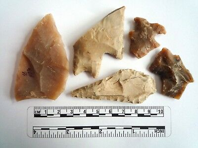 Native American Arrowheads found in Texas x 5, dating from approx 1000BC  (2252)