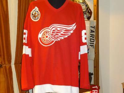 Detroit Red Wings Game Worn Jersey