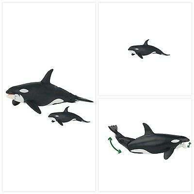 Animal Pack Baby Killer Whale Calf Mini Figure Play Toy Kids Ocean Sea Creature Toys & Hobbies