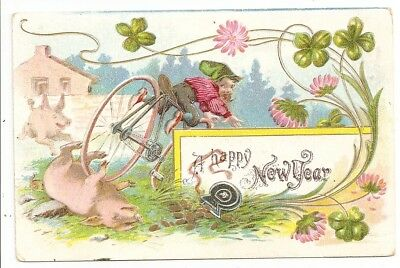 Gnome on Bicycle runs over Pig, Happy New Year, 1907 Spring Brook ND pm Postcard