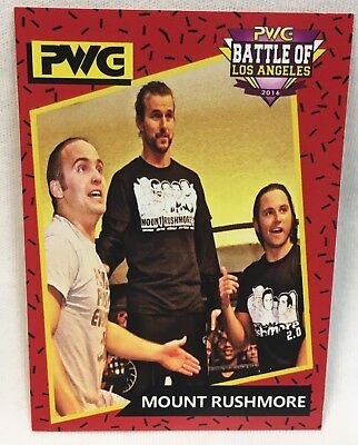 2016 PWG Wrestling ADAM COLE & THE YOUNG BUCKS Rookie Mount Rushmore NXT WWE RC