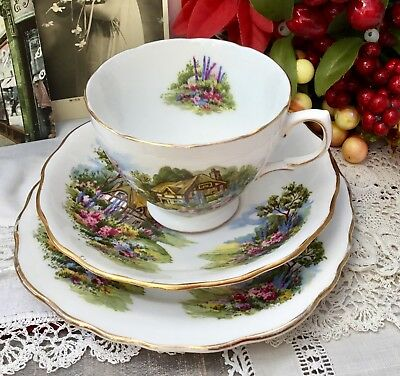 ROYAL VALE 1960s TRIO SET CUP SAUCER PLATE - COTTAGE GARDEN GILDED BONE CHINA