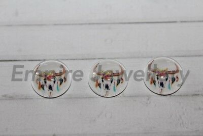 2 x Longhorn Steer Skull #5 12x12mm Glass Cabochons Cameo Dome Bull Cow Deer