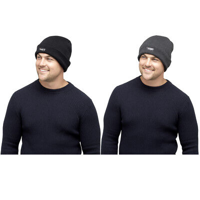 173d5b9783b Mens 3M Warm Thinsulate Lined Knitted Beanie Hat Black Grey One Size Winter  New