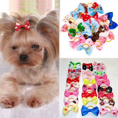 20 Pair Mixed Small Pet Dog Hair Bows w/Rubber Bands Cat Grooming Accessories