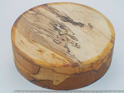 "English Spalted Beech wood turning bowl blank.  255 x 75mm (10 x 3"").  2546"
