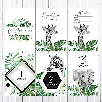 Baby Milestone Cards, 4x6 Photo Prop, 33 Cards, green, leaves, Giraffe, elephant