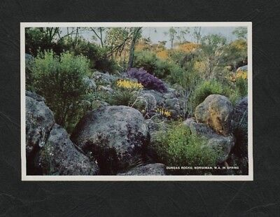 e3193)   LOCAL POSTCARD OF THE DUNDAS ROCKS IN SPRING,NORSEMAN,WESTERN AUSTRALIA