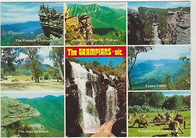 Multiscene The Grampians Victoria Nucolorvue Postcard