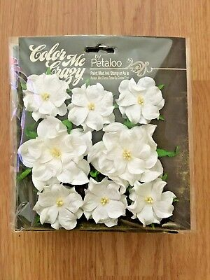 Petaloo Color Me Crazy Wild Roses - CRAFT FLOWERS - DISCONTINUED - HARD TO FIND