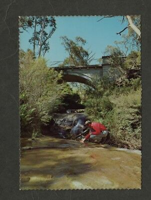 e2845)   POSTCARD-THE MEETING OF THE WATERS, LEURA, BLUE MTNS  N.S.W. AUSTRALIA