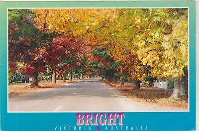 Delaney Avenue Bright Victoria Large 178Mm X 119Mm Nucolorvue Postcard