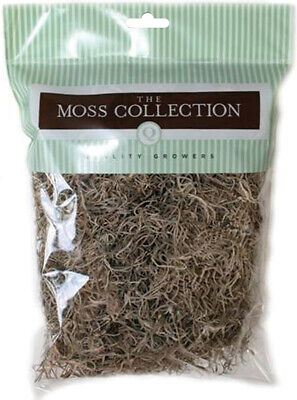 Quality Growers Preserved Spanish Moss 108.5 Cubic Inches-Natural