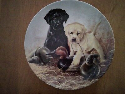 """1988 Knowles Plate """"Field Puppies""""-""""A Perfect Set-Labrador Retrievers"""""""