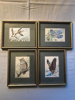 Genuine Woven Framed Pictures From The Cash's Collector Range Of Various Birds