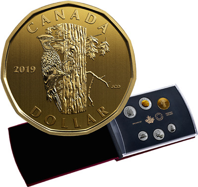 6-Coins Specimen Set 2019 Classic Pileated Woodpecker Dollar $1 Loonie Canada152