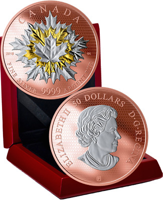2019 Maple Leaves in Motion $50 5OZ Pure Silver Gold Plated Proof Coin Canada