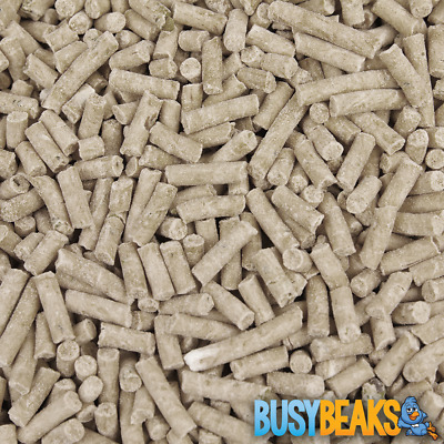 BusyBeaks Mealworm Suet Pellets - High Quality Feed Wild Garden Bird Food