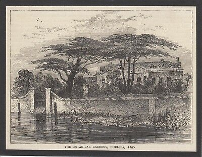 REDUCED 'The Botanical Gardens, Chelsea, 1790' book plate