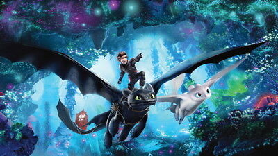 """028 How to Train Your Dragon 3 - The Hidden World Hiccup Movie 24""""x14"""" Poster"""