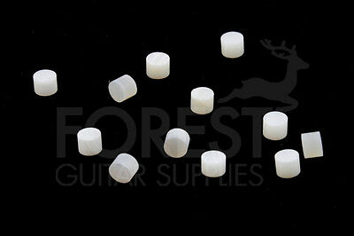 Gitarre hals side punkte 2mm real white mother of pearl set of 13