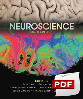 [PDF] Neuroscience 6th Edition by Dale Purves e book [PDF]