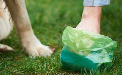 New Plastic Poo Bags Dog Poo Bags Dog Pet Waste Bags upto 60 Bags Free Post UK