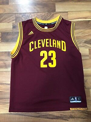 cheaper 5cf40 ca433 lebron james retro cavs jersey