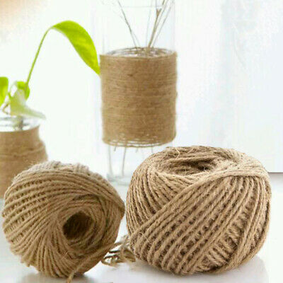 30/100m Natural Brown Jute Thread Rustic Twin String Hemp Rope Cord Garden MPZ
