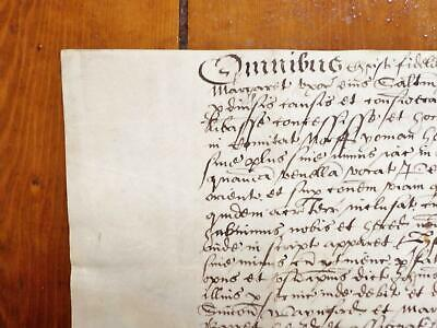 1598 Stanhoe Norfolk 16th century Latin Elizabethan Vellum Deed Document