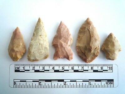 5 x Native American Arrowheads found in Texas, dating from approx 1000BC  (2211)