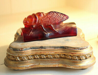 A Good Chinese Cherry Amber Style Carved Cicada