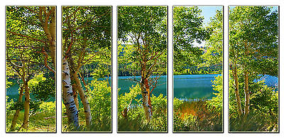 5 Piece Green Tree Lake Nature Canvas Wall Art Picture Print Home Bedroom Decor